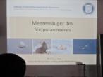 "Dr. Helena Herr an der HPS – Vortrag ""Meeressäuger des Südpolarmeeres"""